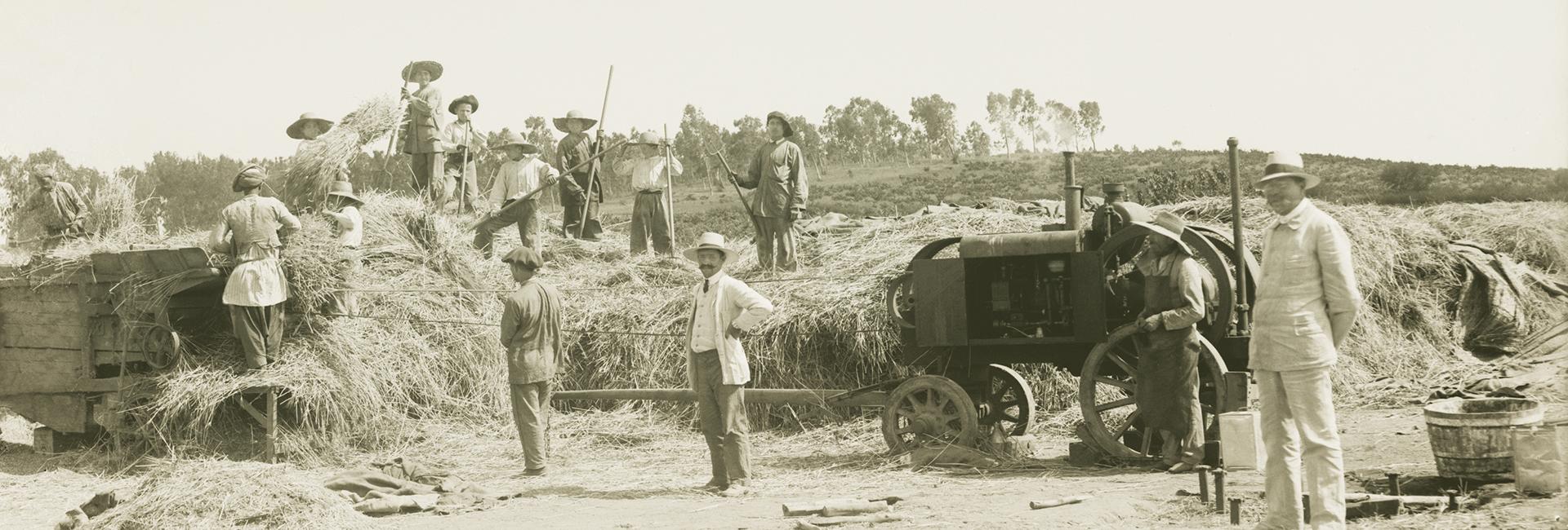 ארץ ישראל הישנה והטובה